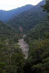 Highland Amazon creek