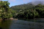 Rio Pini Pini flowing out of Manu National Park [manu_0509]