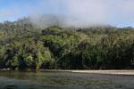 Pini Pini River