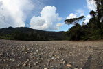Dry river bed in the Amazon basin [manu_0917]