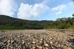 Dry river bed in the Amazon basin [manu_0924]