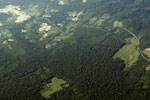Mosaic deforestation near the Transoceanic highway