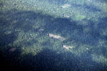 Aerial view of deforestation for cattle pasture in the Amazon