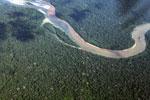 Amazon rainforest river in the Peruvian Amazon