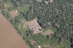 Aerial picture of cattle pasture cleared along a river in the Amazon