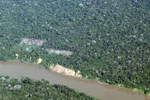 Overhead photo of cattle pasture cleared along a river in Peru's Madre de Dios Department