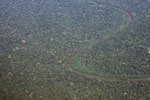 Aerial photo of the Amazon rainforest