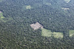 Overhead view of small-scale deforestation in the Amazon
