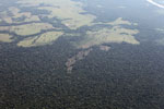 Airplane view of small-scale deforestation in the Amazon