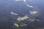 Small-scale deforestation in the Amazon [peru_aerial_0550]