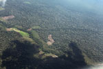 Deforestation for cattle pasture in the Peruvian Amazon [peru_aerial_0658]