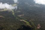 Deforestation for cattle pasture in the Peruvian Amazon [peru_aerial_0662]