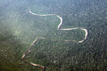 Aerial photo of the rainforest canopy in Peru's Western Amazon