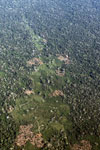 mosaic deforestation in the Peruvian Amazon