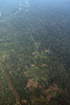 Overhead photo of mosaic deforestation in the Peruvian Amazon