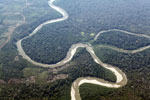 Deforestation along a river in the Peruvian Amazon