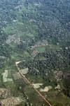 Aerial photo of deforestation along a river in the Peruvian Amazon
