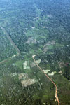 Aerial picture of deforestation along a river in the Peruvian Amazon