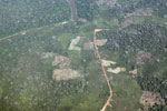 Airplane view of deforestation in the Peruvian Amazon