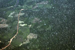 Aerial photography of deforestation in the Peruvian Amazon