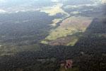 mosaic deforestation in the Peruvian Amazon [peru_aerial_1138]