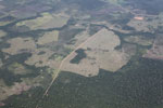 Aerial picture of large-scale deforestation for ranching in the Peruvian Amazon