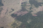 Overhead view of large-scale deforestation for cattle pasture in the Peruvian Amazon