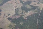 Overhead view of large-scale deforestation for cattle ranching in the Peruvian Amazon