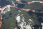 Deforestation for cattle ranching [peru_aerial_1311]