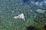 Deforestation for cattle ranching [peru_aerial_1347]