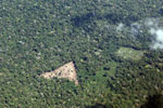 Deforestation for cattle ranching [peru_aerial_1351]