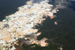 Airplane view of Amazon landscape scarred by open pit gold mines