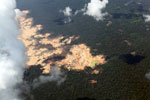 Aerial view of a massive gold mining area in the Amazon [peru_aerial_1553]