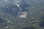 Deforestation in the Amazon [peru_aerial_1608]