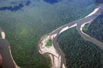 Aerial view of the rainforest of the Amazon basin