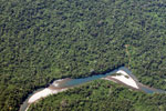 Plane view of forest in the Amazon basin