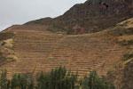Inca terraces [wayquecha-andes_0051]