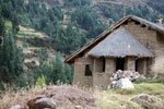 Andean home