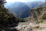 Landslide in the Andean cloud forest [wayquecha-andes_0157]