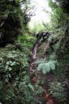 Waterfall at Manuq p'uyu chaca