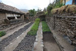 Reforestation nursery in Peru