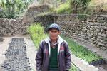 Reforestation worker
