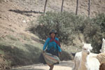 Quechua woman in the Andes with her livestock [wayquecha-andes_0744]
