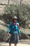 Quechua woman in the Andes with her livestock [wayquecha-andes_0746]