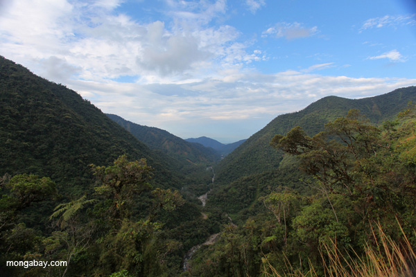 Kosnipata Valley in Manu National Park, Peru. Photo by: Rhett A. Butler.