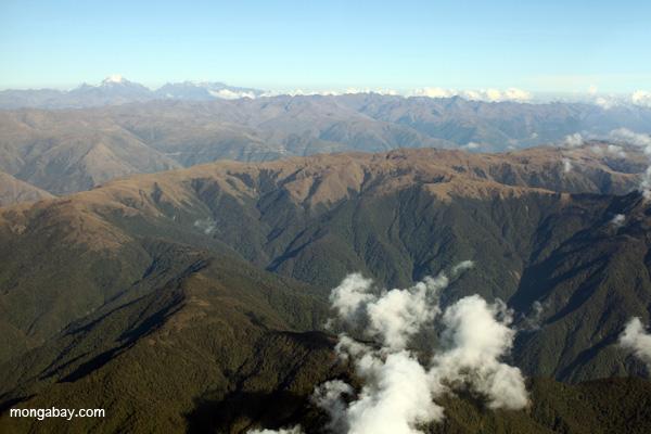 Bosque tropical nuboso amazónico y los Andes en Perú. Es posible que esta región albergue más especies endémicas que cualquier otra región del mundo. Foto por: Rhett A. Butler.