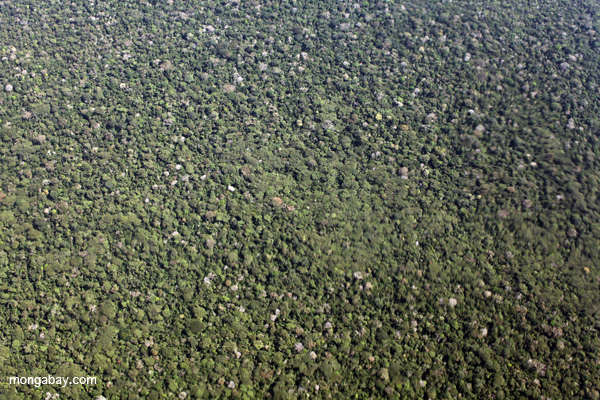 Aerial view deforestation adjacent to the Transoceanic highway in Peru. This highway opened up vast areas of the Amazon to colonization. Photo by: Rhett A. Butler.