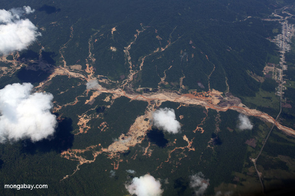 Aerial picture of gold mining damage in Peru's Amazon rainforest. The gold mining boom is a perilous threat to the giant river otter. Photo by: Rhett A. Butler.