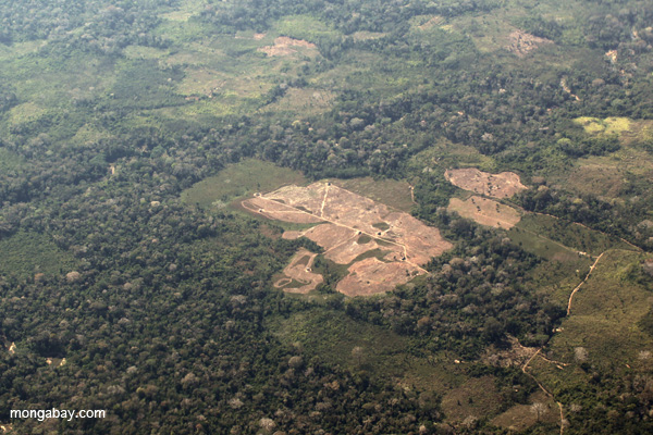 Aerial view of deforestation in the Peruvian Amazon. Photo by: Rhett A. Butler.