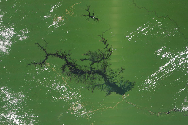 Lake Balbina, a giant Amazon dam